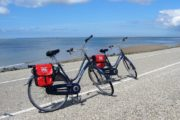 Cykler med 7 gear slår fint til i det flade terræn
