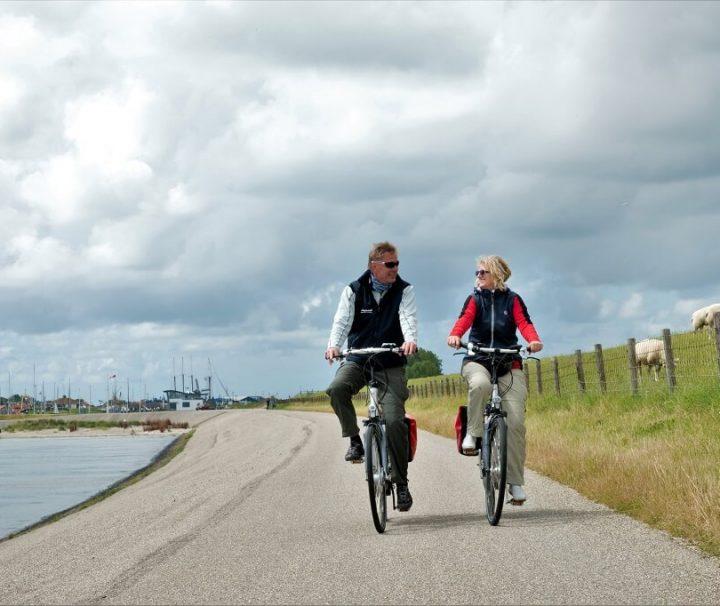 Cykling ad flade veje