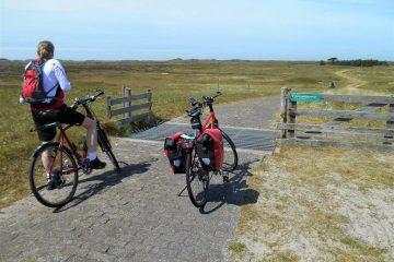 Cyklister på flade enge i Holland