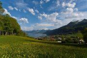Vandreferie Wolfgangssee i Salzkammergut Østrig