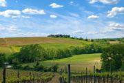 Vandreferie i Toscana med bakker og vinmarker