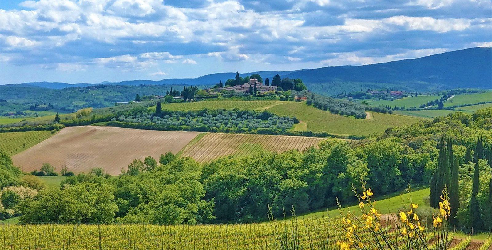 Toscanas bakker