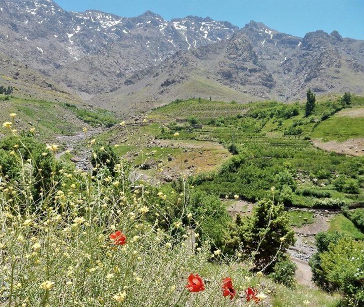 Udsigt over Imenane dalen med Atlasbjergene i baggrunden