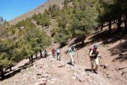 Vandring op ad bakke til passet Tizi n´Tamatert