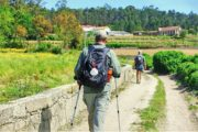 Vandring ad grusvej gennem landbrugsland med vinmarker
