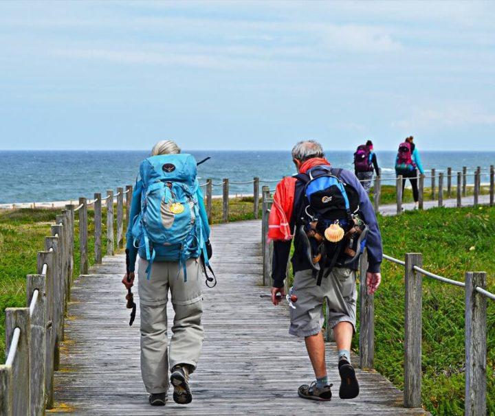 Vandring ad træbroer langs kysten