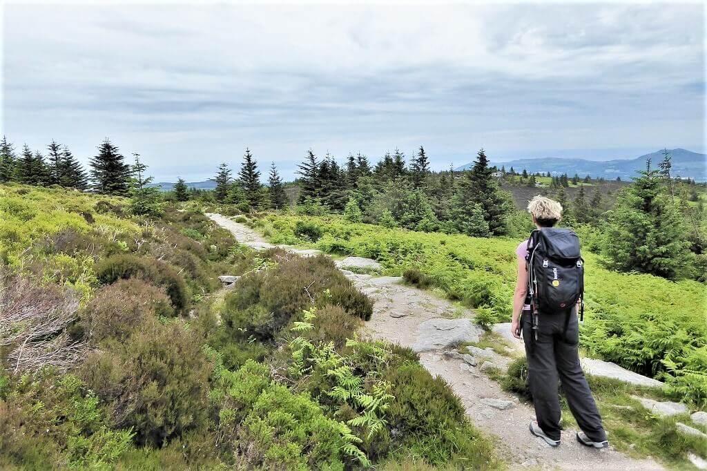 Vandreferie Irland Wicklow Way