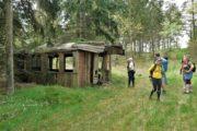Gammel togvogn midt i skoven