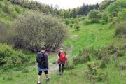 Vandreturen bringer dig over marker og gennem skove