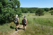 Vandring gennem terræn nær Ørnbjerg Mølle