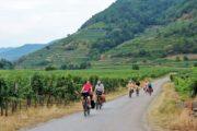 Cykelferie langs Donau i Østrig