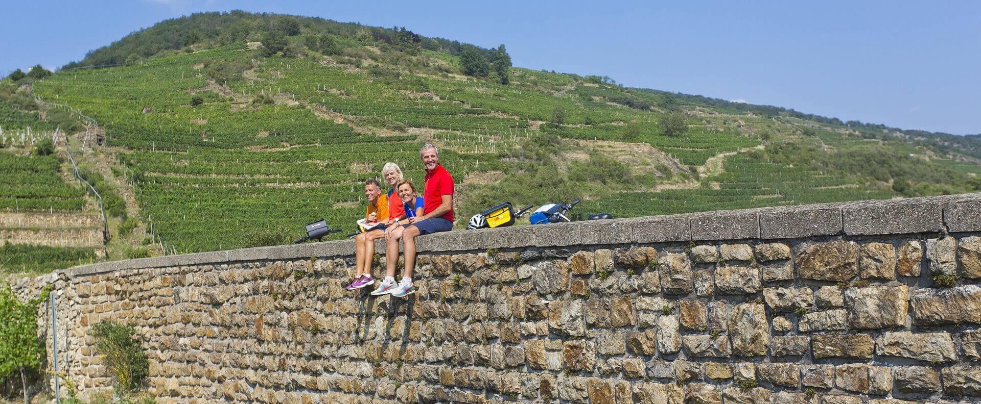 Langs Donau fra Passau til Wien