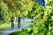 Cykelferien er primært ad flade velholdte cykelveje