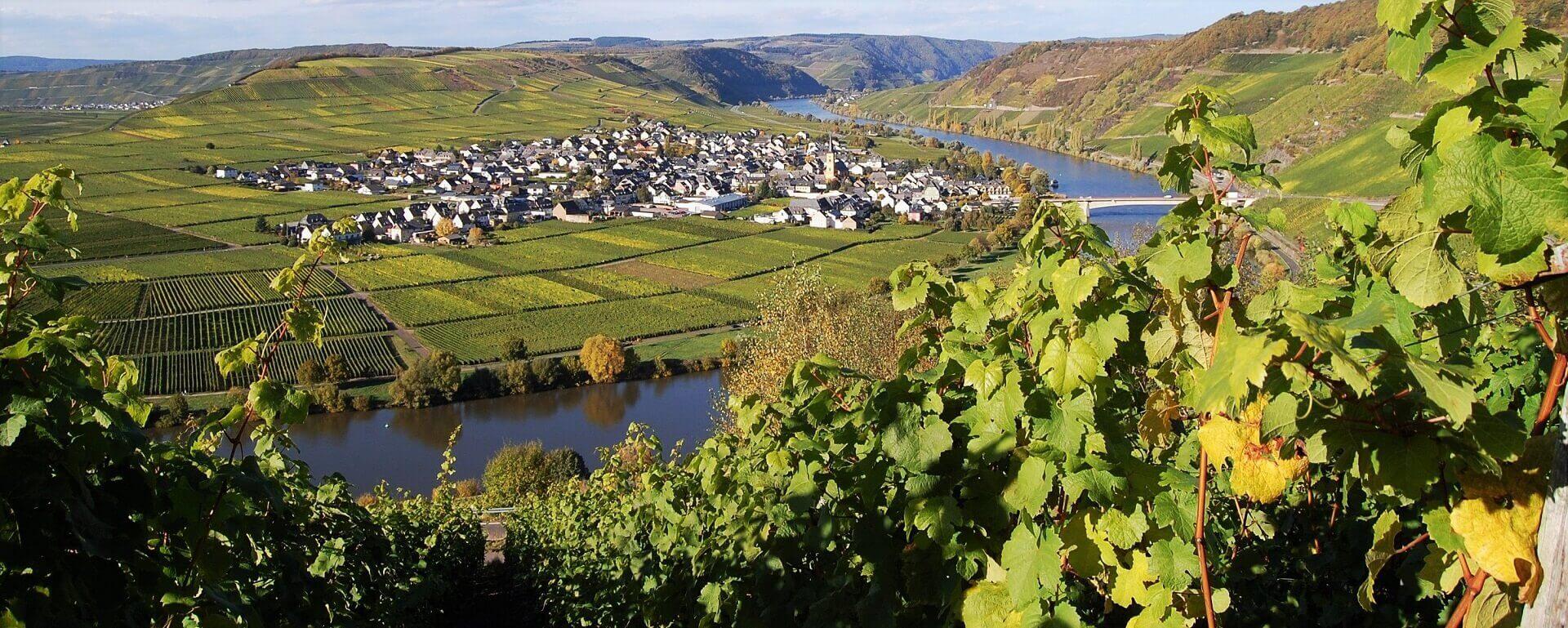 Langs Mosel fra Trier til Koblenz
