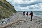 Vandring langs kysten på Mols Hoved