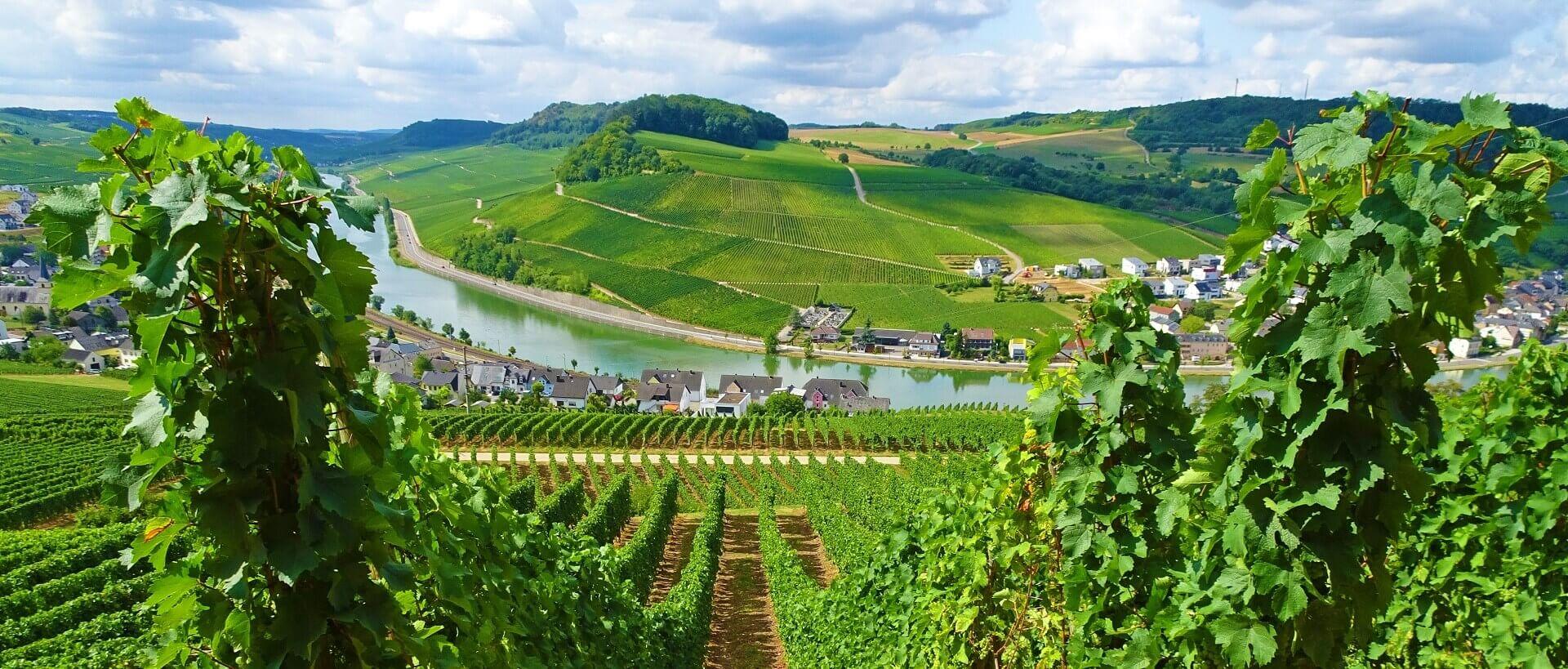 Langs Mosel og bjergkæden Eifel