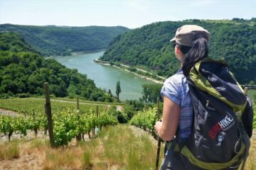 Vandring langs Rhinen med store skove