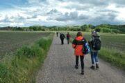 Vandrekursus Søhøjlandet vandring ad grusvej