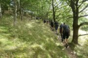 Vandring på Mols Bjerge Stiens Kaløetape