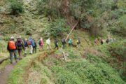 Vandring langs en af Madeiras mange vandingskanaler
