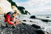 På strandene nedenfor klinterne er det muligt at finde fossiler ©TMV/Roth