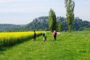 Vandreferie-Tyskland-Sachsiske-Schweiz-Königstein-vandrere