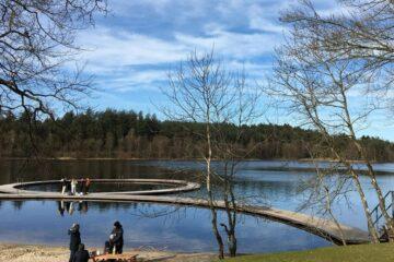 Vandrekursus i Silkeborgskovene og Almind Sø