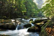 Floden løber gennem Bodental