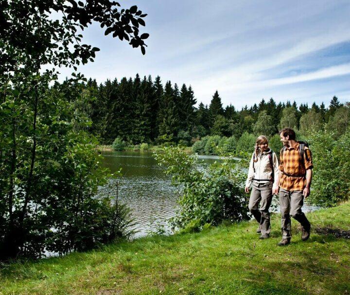 Vandreferie i Harzens grønne landskab