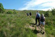Vandring mod toppen af Trehøje
