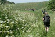 Vandring langs marker på Mols Hoved