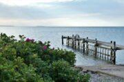 Badebro ved Esby Strand