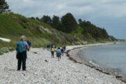 Vandring langs stranden på Sletterhage